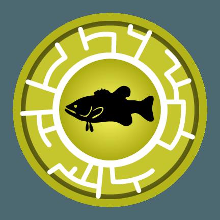 Bass Creature Power Disc Eric 39 s